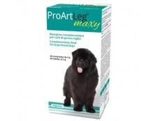 ProArtLeg Maxi (60 comprimés de 2g)