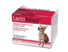 LactoAdapt (20 comprimés de 1g)